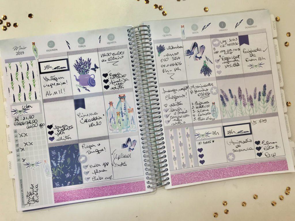 Mini Kit LAVANDA | Planeje Comigo em vídeo