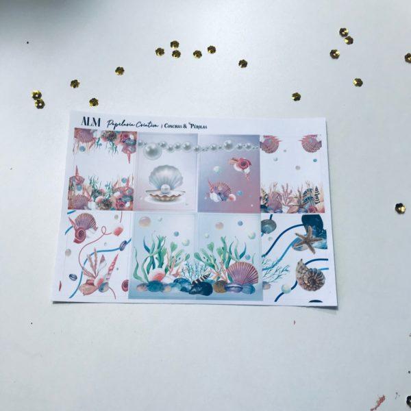 Conchas & Pérolas